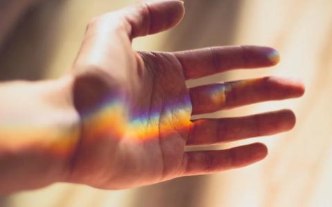 Oświadczenie Kolegium Rektorskiego Uniwersytetu Szczecińskiego w sprawie osób LGBT+