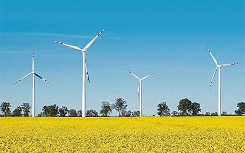 Dla środowiska i dla energii