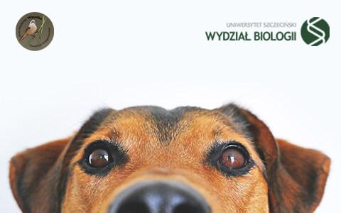 ABC psychologii zwierząt